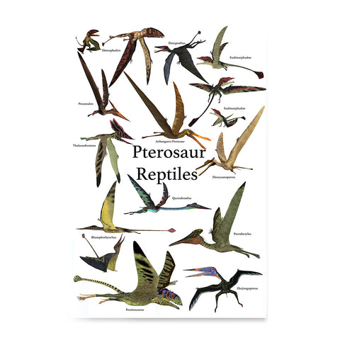 Ezposterprints - Pterosaur Reptiles Dinosaurs - The World's Dinosaur Families Posters Collection