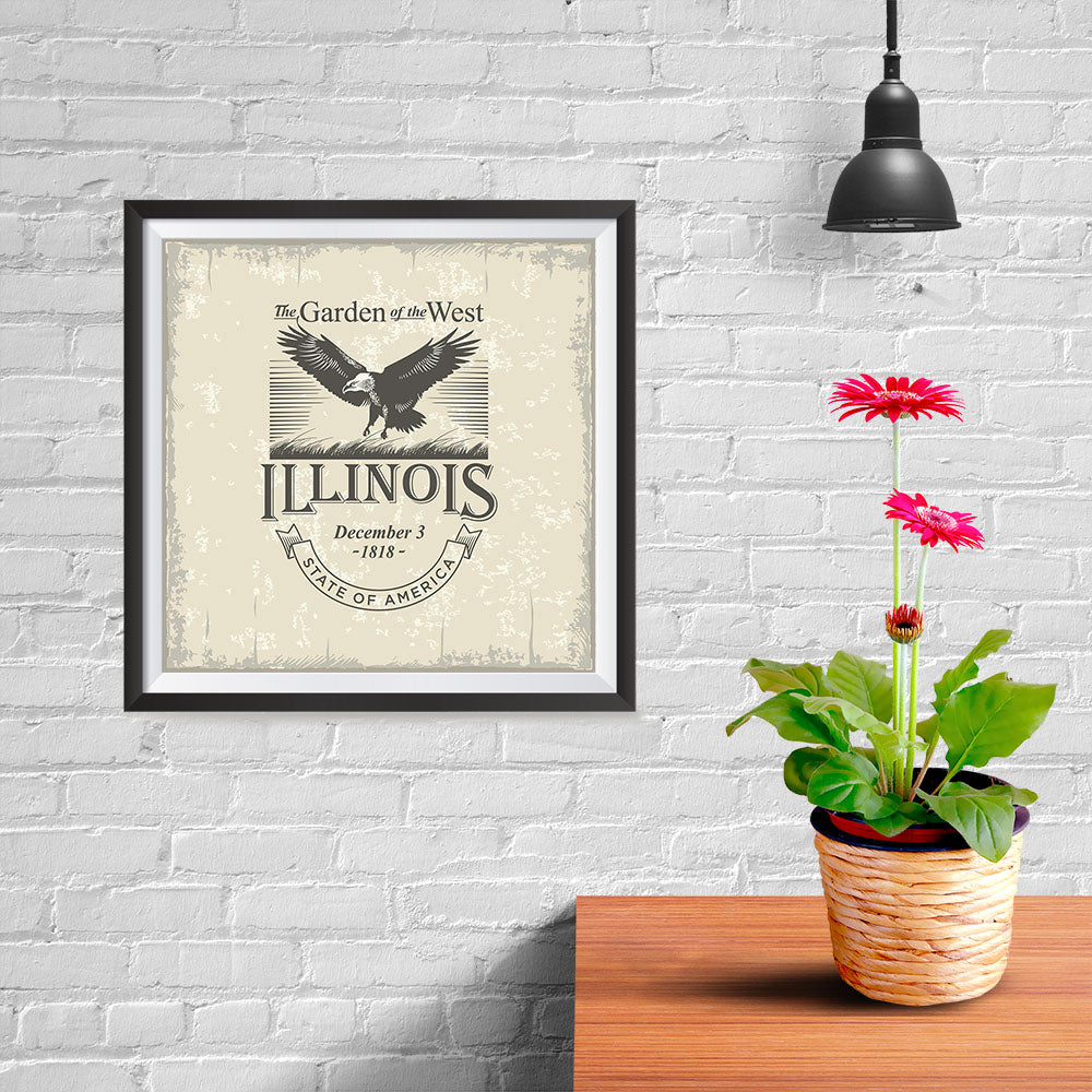 Ezposterprints - Illinois (IL) State Icon - 10x10 ambiance display photo sample
