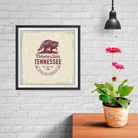 Ezposterprints - Tennessee (TN) State Icon - 10x10 ambiance display photo sample