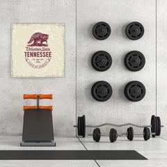 Ezposterprints - Tennessee (TN) State Icon - 32x32 ambiance display photo sample