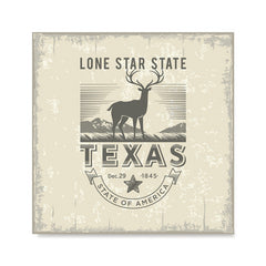 Ezposterprints - Texas (TX) State Icon