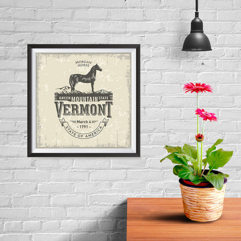Ezposterprints - Vermont (VT) State Icon - 10x10 ambiance display photo sample