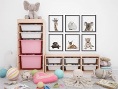 Adorable Portraits 1, Baby Animal Series ambiance display photo sample