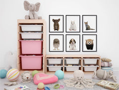 Adorable Portraits 2, Baby Animal Series ambiance display photo sample