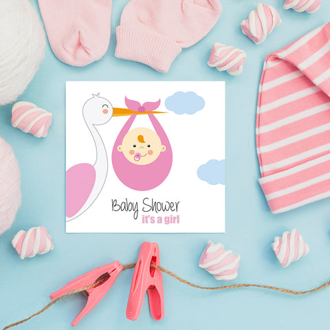 The Stork Brings a Baby Girl, Baby Shower Decoration Poster ambiance display photo sample