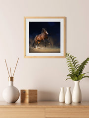Galloping on Sand, Elegant Black White Red Sport Horses ambiance display photo sample
