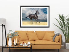 Horse On Sand, Elegant Black White Red Sport Horses ambiance display photo sample