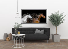 White, Black and Red, Elegant Black White Red Sport Horses ambiance display photo sample