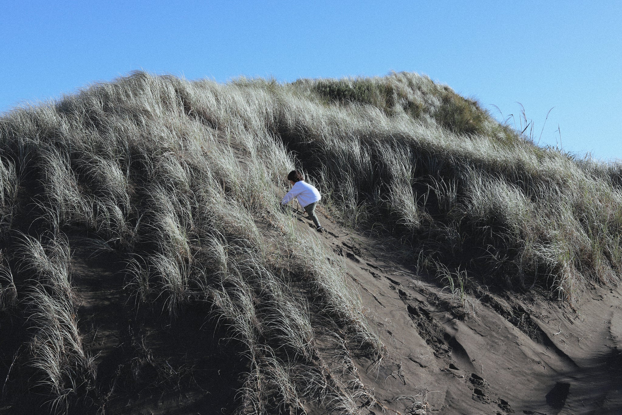 muriwai sand dunes | family adventures | organic, naturally dyed clothing | kids