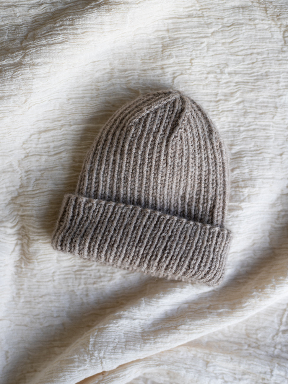 The Wool Beanie in Oatmeal