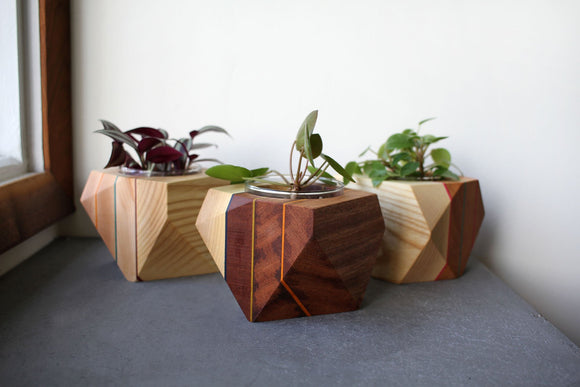 Geometric Planter made from repurposed skateboards