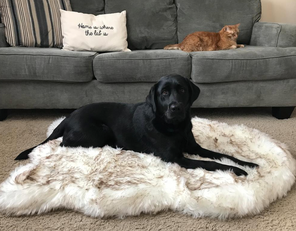 Faux Fur Ortho-Rug