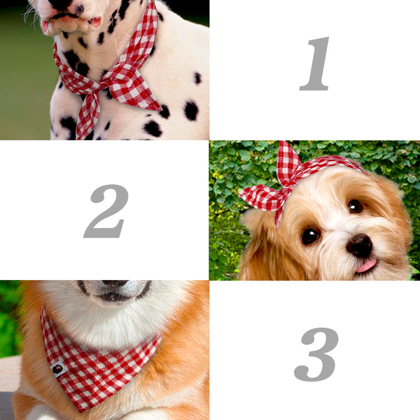 5 Pack of Dog Bandanas!