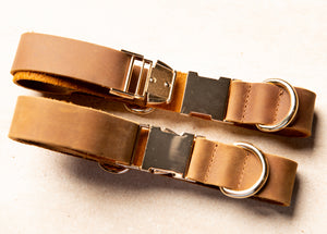 Distressed Leather Dog Collar & Leash
