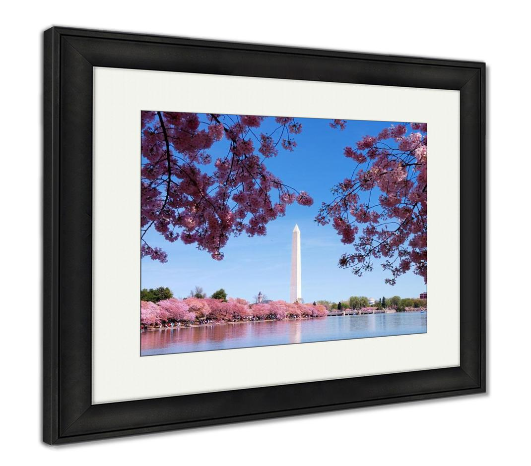 Framed Print, Washington Dc Cherry Blossom