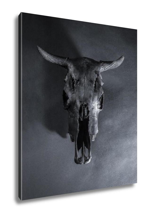 Gallery Wrapped Canvas, Black Bulls Skull