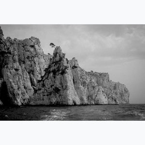 Survival, tree on cliff, calanque, black and white photograph, sea, France