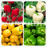 100 pcs Mixed Yellow Puple Red Green White Mix Sweet Bell Hot Pepper bonsai Vegetables Paprika, Bonsai Plant for Home Garden
