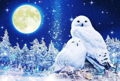 White Owls (Glow in the Dark) 1000pcs Puzzle