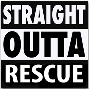 Straight Outta Rescue black and white vinyl sticker | Trill Paws