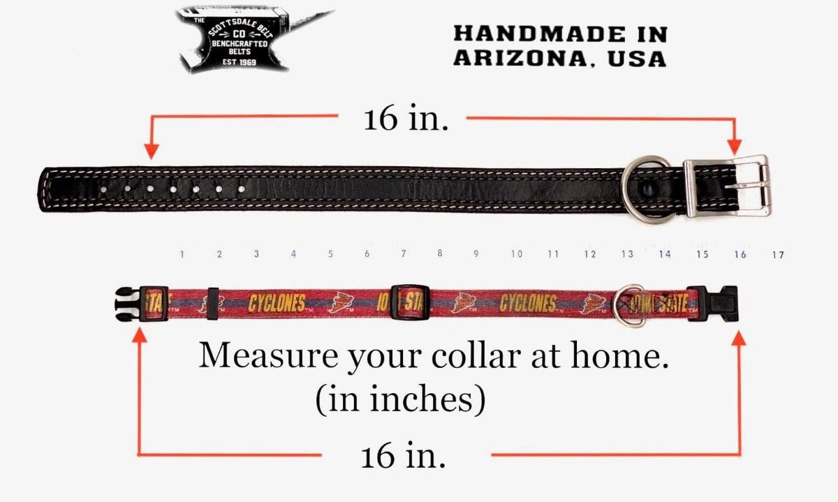"The BRITTANY 5/8"" Dog Collar"