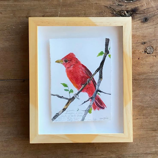 "SUMMER TANAGER 8"" X 10"""