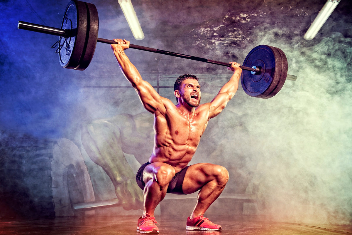 Olympic Weightlifting Coach Certification | Powerlifting Coach Certification
