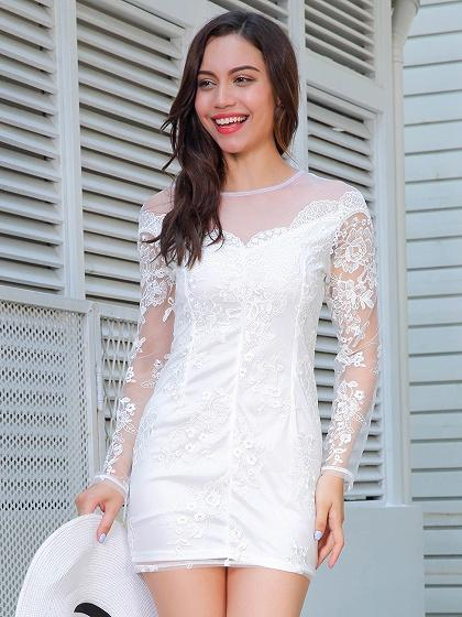 White Embroidery Sheer Panel Long Sleeve Bodycon Mini Dress