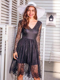 Black V-neck Sheer Sleeve Mesh Overlay Dress