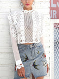 White Crochet Lace Sheer Sleeve Crop Top