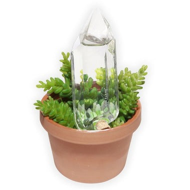 Self Watering Crystal