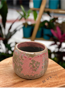 Small Light Pink Ceramic Pots