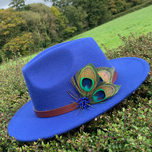 Royal blue fedora with peacock feathers