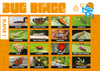 Double The Fun - Bug Hunting Kit and Bug Catcher Bingo Game - I Did It