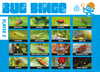 Bug Hunting Kit and Bug Bingo Game (5+) + £2.95 P&P