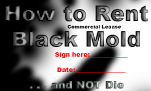 How to Rent Black Mold . . . and NOT Die | Lisa Loucks-Christenson