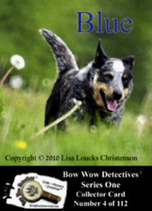 Electronic  Photo Traders™ | Blue | Bow Wow Detectives®