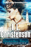 December Point written by L. L. Christenson