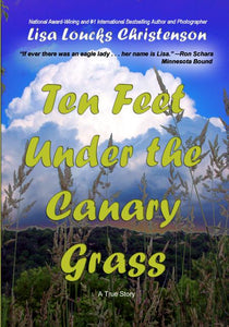 Ten Feet Under the Canary Grass  |  Hardcover