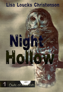 Night Hollow, Book 1, OWLS OF HUOULAH Series