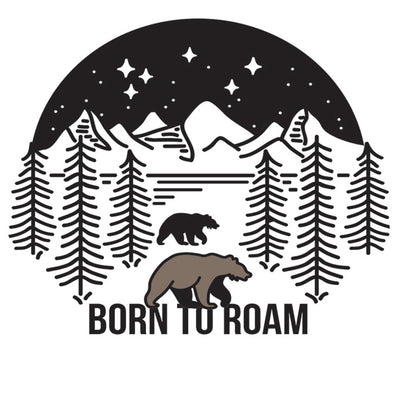 Born To Roam Car Coaster