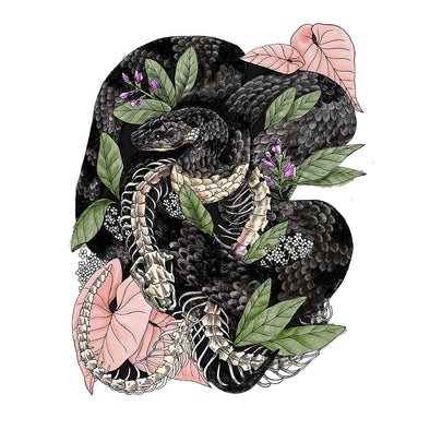 Snake Art Print by Mattea