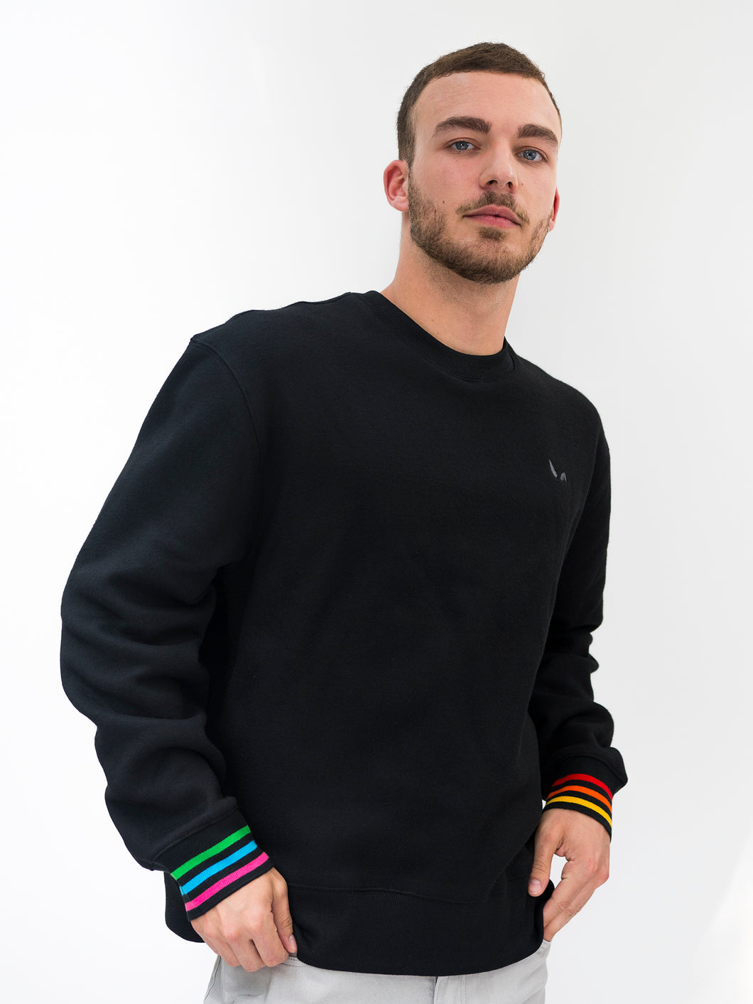 Black Gay Rainbow Sweatshirt on Model