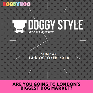 doggy style market, the biggest place in london catered just for dogs