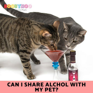 Can I Share Alcohol With My Pet?