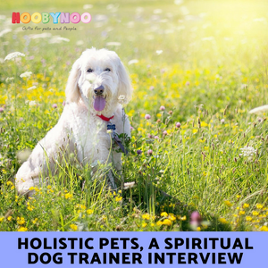 Holistic Pets, A Spiritual Dog Trainer Interview
