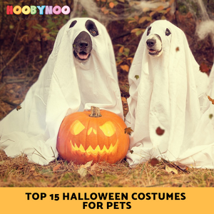 Top 15 Best Halloween Costumes for Pets