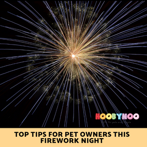 large firework, top tips for pet owners when dealing with firework displays