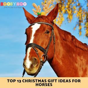 Top 12 Christmas Gift Ideas for Horses