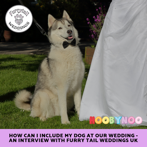 How can I include my Dog at our Wedding - an interview with Furry Tail Weddings UK